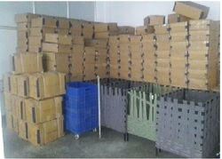 Warehouse & Logistic