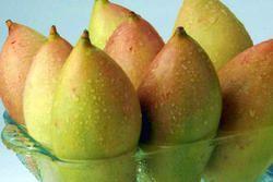 Jumbo Totapuri Mango