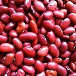 Red Kidney Beans, राजमा - View Specifications & Details