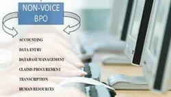 International Non Voice Project