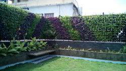 Outdoor Vertical Garden