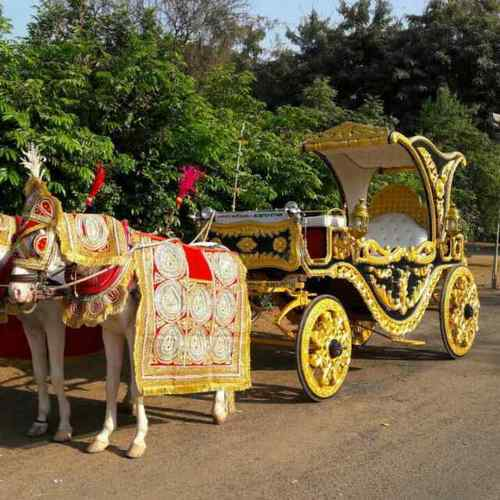 Golden Coach, Wedding Baggi - Royal Baggiwala, Surat | ID: 13524434962