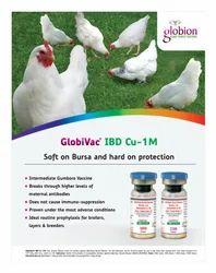 Infectious Bursal Disease Vaccine