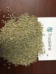 Green Millet (Bajra), Pack Type: P.p Bag, Pack Size: 50 Kg