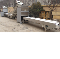Dry Type Onion Peeling Machine