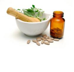 ayurvedic medicine suppliers manufacturers dealers in haridwar
