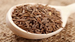 Cumin Seeds Testing Services