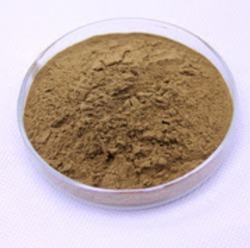 Natural Yucca Extract