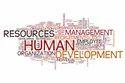 Human Resource Management Software