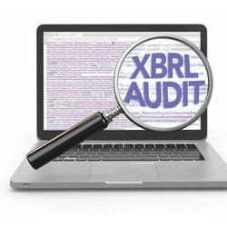 XBRL Consultant Services