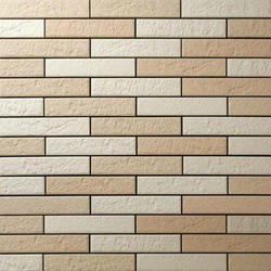 Exterior Wall Tile At Rs 150 /square Feet | Exterior Wall Tile | ID:  13690324348