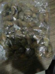 Full Seed