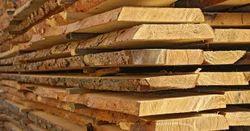 Cut Sizes Wood log