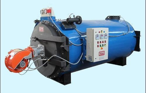Gas Fired Steam Boiler at Rs 200000 /piece(s) | Gas Fired Steam ...