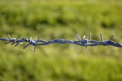 Barbed Fence Wire