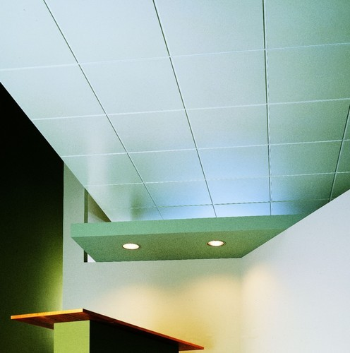 Panz Metal Ceiling Panel Roofing And False Ceiling Usg