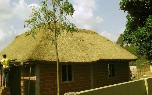 Thatched Roof Thatch Roofing