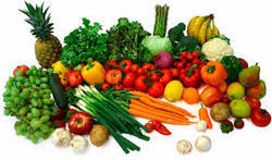 Food Consultancies Testing Services