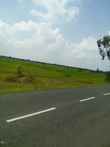 100 Acre Lands