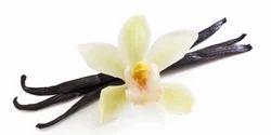 SHRIH Vanilla Spice