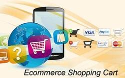 E-Commerce Enabled E Commerce Websites With Shopping Carts, India