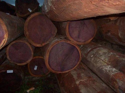Purple Heart Wood Wholesaler From Chennai