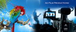Film Production / Short Films/ Documentaries