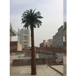 Palm Tree - Artificial 20  feet