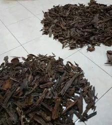 Agarwood Chip in Kannauj, अगरवुड चिप, कन्नौज