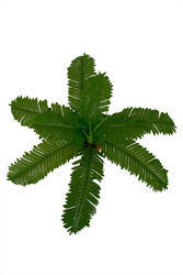 Artificial Green Fern Leaves