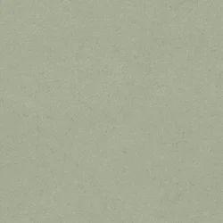 Tasha Polyester Viscose Fabric, GSM: 150-200