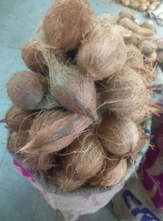 Tecicated Coconut