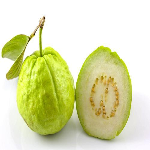 Guava in Hyderabad - Latest Price & Mandi Rates from Dealers