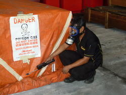 Wooden Box Fumigation Service