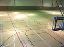 Asian Flooring Brown Tennis Court Synthetic Flooring