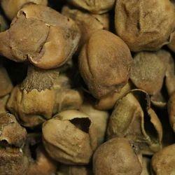 Dried Gunda