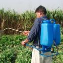 Knapsack Sprayer
