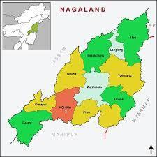 how many districts are there in nagaland