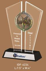 Corporate Award Trophy