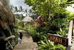 Bamboo Farm House
