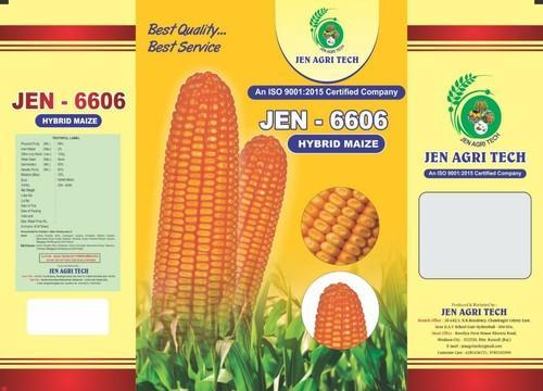 JEN 6606 Hybrid Maize Seeds, for seed purpose