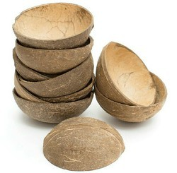 None Coconut Shell Products