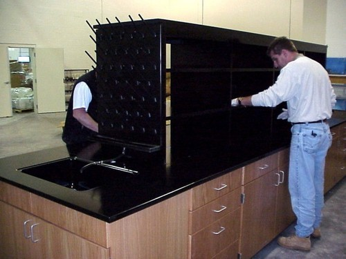 Image result for Fume Hood Services
