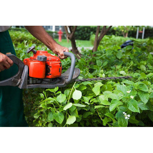 Garden Maintenance Service Manufacturer from Howrah