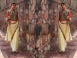 Velvet Heavy Designer Blouse Plain Saree & Heavy Border