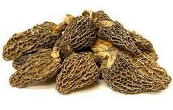 Dry Morels