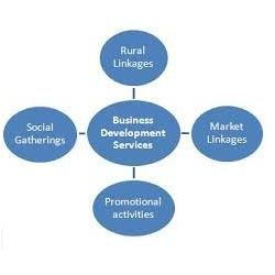 Business Development Service