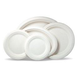 Bagasse Tableware Product - Disposable Pulp Plates