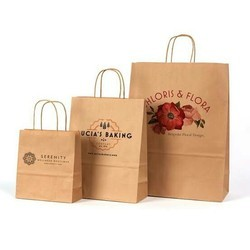 Paper Carry Bags for Packaging