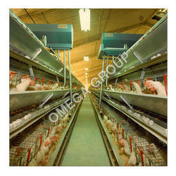 Semi Automatic Poultry Cage